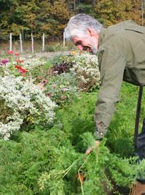 Master Gardener Jan Enthoven