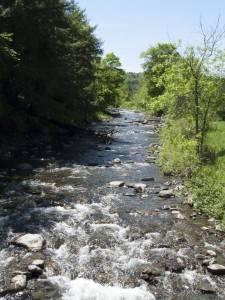 Stevenson River